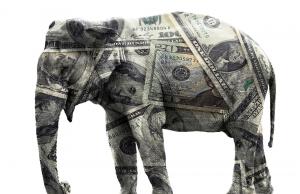 John Harwood, Your Money In Republican Debate