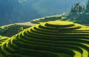 Steve Pomeranz, Peruvian Farmers, Building Steady Wealth