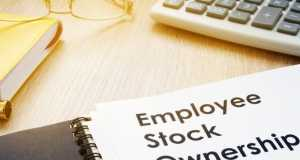 Steve Pomeranz, Employee Stock Option Plans