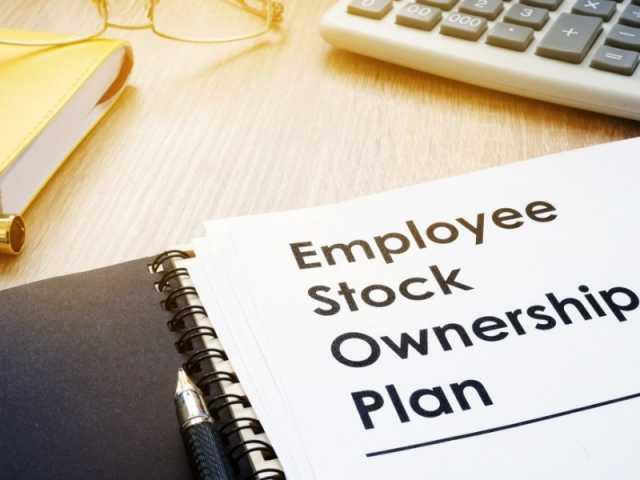Steve Pomeranz, Employee Stock Option Plans